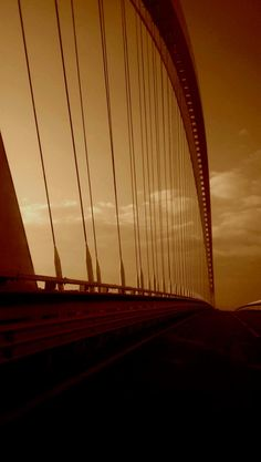 #calatrava #bridge #architecture #love #sunshine