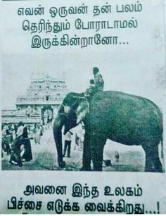 Discover ideas about tamil motivational quotes Boss Quotes, Status Quotes, Funny Quotes, Life Quotes, Qoutes, Tamil Motivational Quotes, Inspirational Quotes, Independent Quotes, Chanakya Quotes