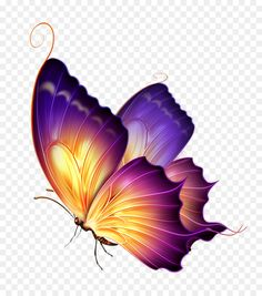 Butterfly clip art tattoo art purple - group of butterfly png Butterfly Clip Art, Butterfly Drawing, Butterfly Pictures, Butterfly Tattoo Designs, Butterfly Painting, Butterfly Wallpaper, Butterfly Watercolor, Watercolor Art, Purple Butterfly Tattoo