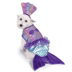 **Please note: We do not take returns of costumes after October Have a swimmingly beautiful looking dog in the Zack and Zoey® Iridescent Mermaid Costume! Shell top that shimmers Shell headband wit Cute Halloween Costumes, Pet Costumes, Halloween Cat, Halloween Ideas, Belle Halloween, Halloween Mermaid, Halloween 2019, Cute Dogs And Puppies, Pet Dogs