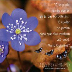 Borboletas de Mario Quintana