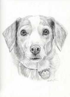 Custom Dog Portrait-Personalized Pet by PatouPetPortraits on Etsy