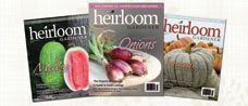 Baker Creek Heirloom Seeds – We only offer open-pollinated seeds: pure, natural and non-GMO! We offer heirloom seeds from 70 countries, including many that we collected ourselves. Started in 1998 by Jere Gettle, as a means to preserve rare seeds. We are located in the beautiful Ozark Mountains of Southern Missouri