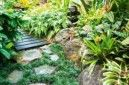awesome tropical path