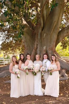 Veil of Grace | Camarillo Ranch House Stunning Bride