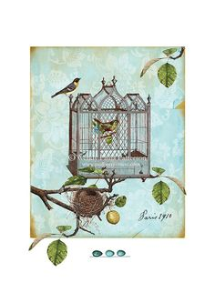 French Vintage Bird Cage