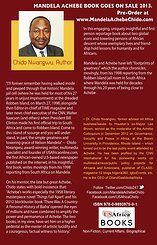 2014 book on Nelson Mandela and Chinua Achebe