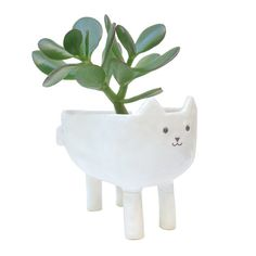 Here you have a white ceramic cat planter designed, shaped and decorated by me.  I made this pot from clay using a pinching technique to form a 30€