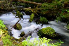 Mount Hood stream