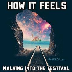 """""""Whose going to what this year? #festivals #music #fun"""""""