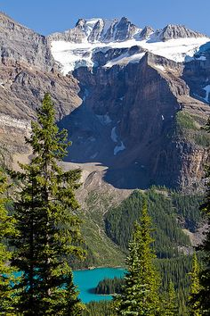 on the way to Larch Valley, Moraine Lake, Banff National Park, Canada