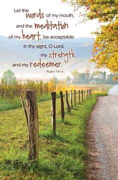 Psalm 19   Psalm 19:14 - Regular Size Bulletins - 50-pak - Christian Supply