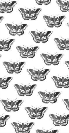 One Direction Drawings, One Direction Harry, One Direction Pictures, Harry Styles Lockscreen, Harry Styles Wallpaper, Wallpaper Ideas, Harry Styles Quotes, Harry Styles Pictures, Butterfly Wallpaper Iphone
