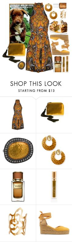 """""""Puppy love"""" by sunnydays4everkh ❤ liked on Polyvore featuring Alexander McQueen, The Row, Silvia Furmanovich, Dolce&Gabbana, ellapolo and Castañer"""