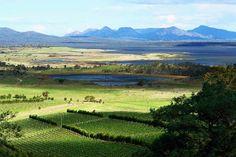 Lookout, East Coast Tasmania. Article by Margaret Morgan of Sheoaks on Freycinet B&B for Think #Tasmania. Photo by Dan Fellow.
