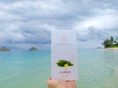 Clarify / Rooibos / $32.00 www.hobbstea.com #rooibos #tea #clarify #hobbs #healthy #hawaii #fit #goals #paradise #beach