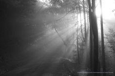 """""""Back Road Sunrise"""" by Chris Waters  www.studiowaters.net"""
