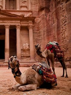 ...I'll ride a camel to an ancient ruin (like Petra, Jordan in this photo)