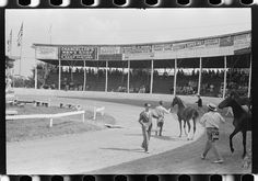 [Untitled photo, possibly related to: Entries in the Shelby County Horse Show & Fair, Shelbyville, Kentucky]