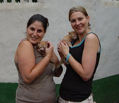 Kloof Lions Club (South Africa) | Kloof Lions got Down and dirty for Mazarat Kennels for abandoned and neglected animals! We made a new (and much needed) play pen for the puppies as well as a running pen for the bigger dogs, some gardening and messiest of all a ton of painting!