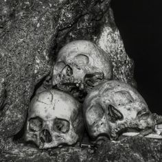 Skull, Photography, Art, Art Background, Photograph, Fotografie, Kunst, Photoshoot, Performing Arts