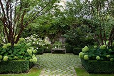 Jardin anglais / Christian Fournet