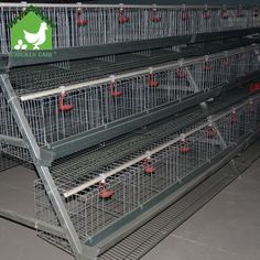 poultry chicken cages New Design egg laying cages for poultry farm Chicken Coop Kit, Portable Chicken Coop, Chicken Cages, Chicken Coop Designs, Building A Chicken Coop, Poultry Cage, Poultry Farming, Best Egg Laying Chickens, Farming System