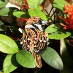 Pretty Birds, Love Birds, Beautiful Birds, Beautiful Gardens, Exotic Birds, Colorful Birds, Bird Pictures, Animal Pictures, Quilling Animals