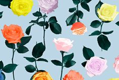 Technicolor Roses, © Youkunst Studio