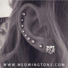 Multiple ear piercings                                                       …