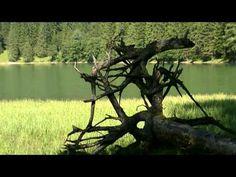 Urgemütliche Almhütte in Alleinlage auf 1.700 m im Naturpark Sölktäler. ❤ Die Bröcklalm für 2 - 8 Personen in der Steiermark. ❤ Jetzt mieten. Vacations, Viajes