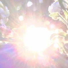 オーラが見えるようになりました | 魂が綺麗になる巫女の授業 Cosmic Art, Christian Pictures, Sky Photos, Kingdom Of Heaven, Color Pencil Art, Beautiful Lights, Lens Flare, Love And Light, Gods Love