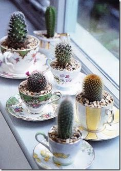 Nice way to use old tea cups & saucers. #recycled #planters