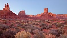 Why the Valley of the Gods Inspires Such Reverence The haunting beauty of an ancient desertscape Craters Of The Moon, Escalante National Monument, Indian Paintbrush, Travel Magazines, Grand Staircase, Park Service, Beautiful Landscapes, Monument Valley, Utah