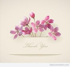 Floral Thank you card with beautiful realistic spring pink flowers and banner with drop shadows on a beige elegant background in modern style Perfect for wedding, greeting or invitation design Illustrator Gratis, Thank You Pictures, Pictures Images, Apricot Blossom, Thank You Flowers, Love Quotes Wallpaper, Thanks Card, Pink Wedding Invitations, Background Vintage
