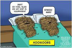 Hooikoors