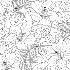 Pen and Ink Cross Hatching Masters Edition Leaf Coloring Page, Flower Coloring Pages, Mandala Coloring, Colouring Pages, Coloring Books, Adult Coloring, Illustration Botanique, Floral Illustrations, Mural Art