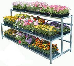 Google Image Result for http://cdn.greenhousemegastore.com/images/products/2-tier-display-dd.jpg