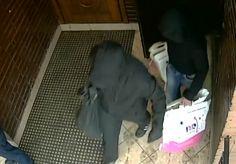 В Домодедово воры-сладкоежки ограбили кафе Баскин Роббинс - Сайт города Домодедово