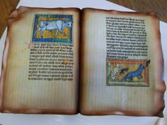 A cake in the form of a Mediaeval codex, from Canadian confectioner SugarSugar (sugarsugar.vpweb.ca). Looks fantastic, but could anyone bear to actually cut and eat it?