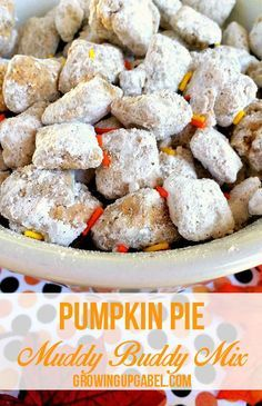 Pumpkin Pie Chex Puppy Chow Recipe Mix it up this fall with a pumpkin flavored Chex puppy chow mix! Just 5 simple ingredients plus about 15 minutes are all you need for this delicious pumpkin recipe everyone will love. Puppy Chow Snack, Puppy Chow Recipes, Chex Mix Recipes, Snack Recipes, Puppy Chow Recipe Easy, Puppy Chow Crispix Recipe, Cupcake Puppy Chow, Healthy Puppy Chow, Dessert Recipes