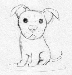 pictures of drawings of pitbulls | Cute pitbull sketch by Dogmaniac on DeviantArt
