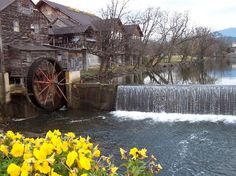 If you visit The Great Smokey Mountains, you might find a working mill. We still go to one in Pigeon Forge. Therefore we have the best cornmeal, flour and pancake and waffle mix anywhere on earth. Oh The Places You'll Go, Great Places, Beautiful Places, Places To Visit, Vacation Places, Vacation Spots, Places To Travel, Gatlinburg Tennessee, East Tennessee