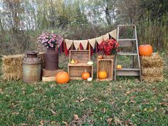 Fall Mini Session Set Up | Fall Mini Session Set-Up. Look at all the different spots for pictures in one setup