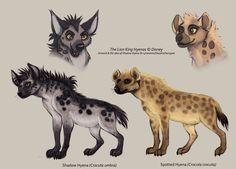 hyena illustrations