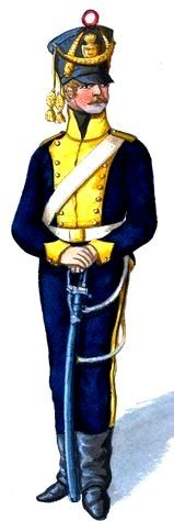Swedish Dragoon 1814 Kingdom Of Sweden, Swedish Army, Napoleonic Wars, Military History, 16th Century, Princess Zelda, Military Uniforms, Warriors, Historia