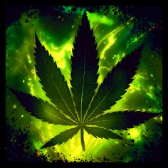 Funny Marijuana Funny X Weed Wallpaper Free Wallpapers Download
