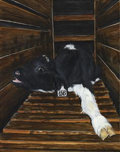 Calf Painting - Simon by Twyla Francois