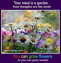 Your mind is a garden quote via www.Facebook.com/LessonsLearnedInLife. More gardening quotes to inspire! http://www.tomatodirt.com/gardening-quotes.html