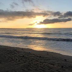 Coucou Le soleil se lève doucement... mais il faut s'attendre à un gros rafraîchissement parait il! Allez plus qu'une journée de boulot et c'est le we!!! Bon vendredi  #cotedazur #cotedazurnow #frenchriviera #soleil #sun #sunset #leverdesoleil #mer #sea #chance #blog #blogger #frenchblogger #youtube #youtuber